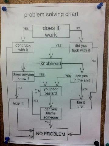 Aussie Problem Solving Chart