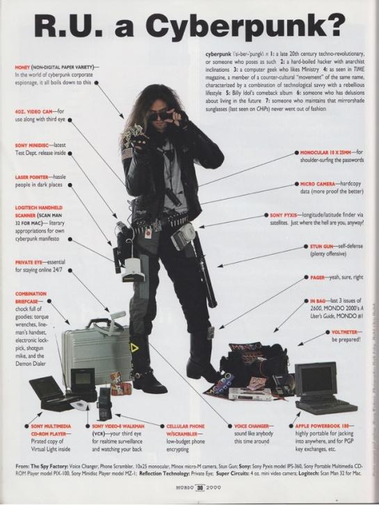 R U a Cyberpunk?